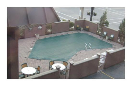Safari Inn Downtown: Pool