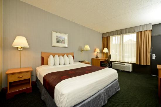 Best Western Inn: King Guest Room