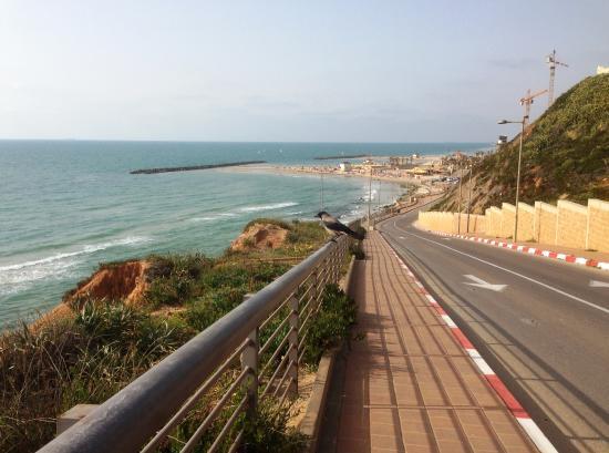 Carmel Netanya Hotel: дорога на пляж