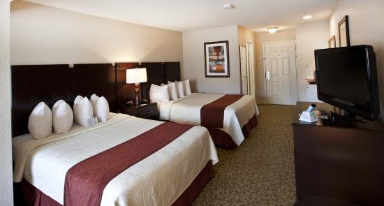 Best Western Plus Westchase Mini-Suites: Double Mini-Suite