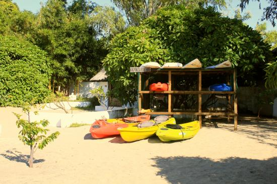 Fish Eagle Bay Lodge: beach