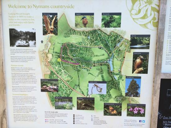 House Garden Map >> Map Picture Of Nymans Gardens And House Haywards Heath Tripadvisor