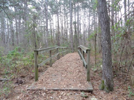 Pinewoods Lake Recreation Area: 2
