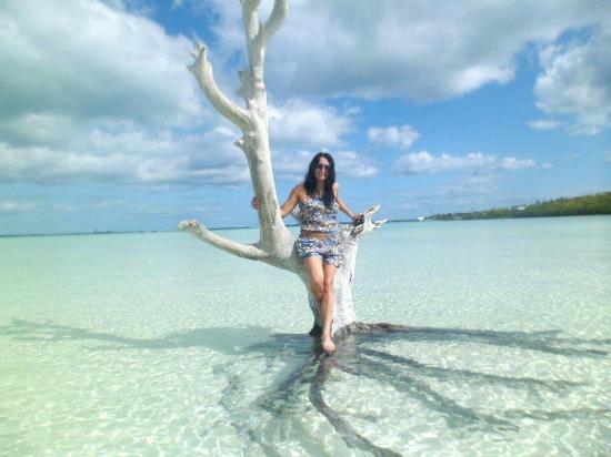 Bahamas Tours en Español: Bahamas Tours en Espanol