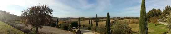 La Pievina: Panorama