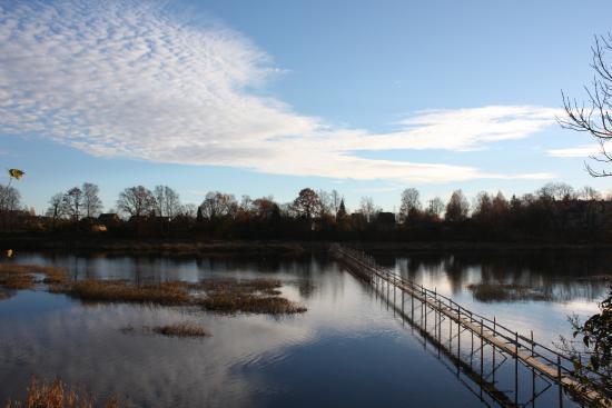 Lamprey Weirs