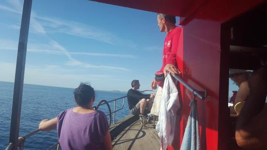 Pescaturismo Amadeus