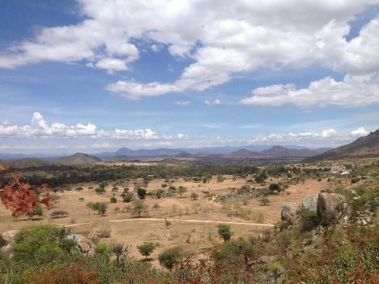 Things To Do in Ruaha National Park, Restaurants in Ruaha National Park