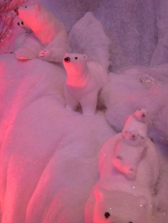 Howden Court Hotel: polar bears having fun