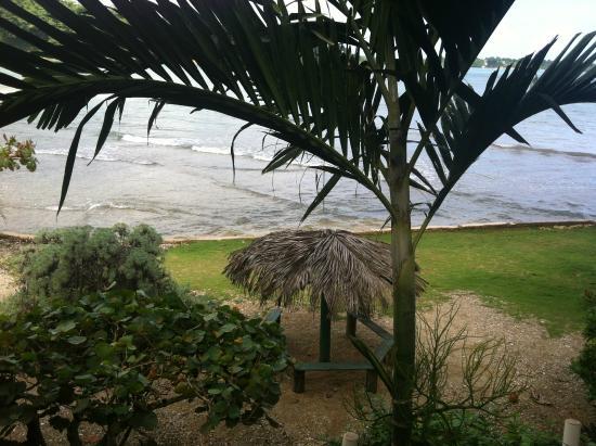 Zion Country Beach Cabins: VISTAS DESDE LA TERRACITA DE LA CABAÑA