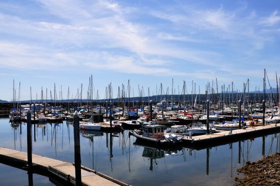 Harborside Inn: Harbor