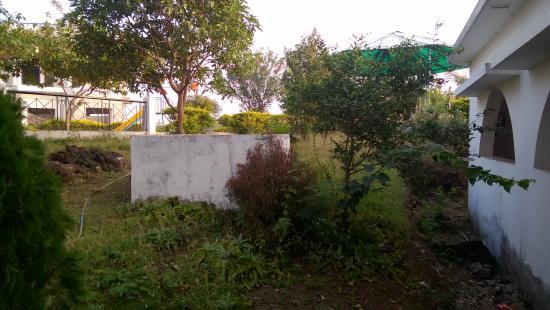 Bargi, India: garden