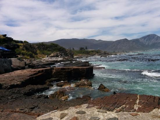 Hermanus, Sudafrica: Voelklip Beach