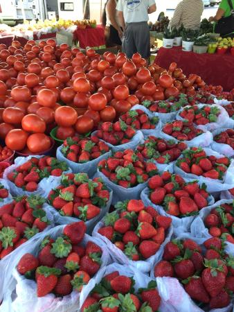 Marco Island Farmers Market-Wednesday: Bountiful selection of freshness