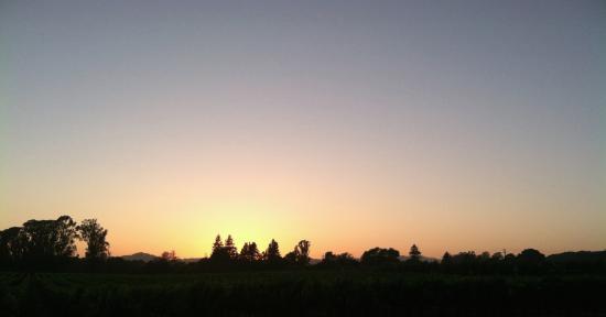 Napa Valley, CA: Carneros Sunset