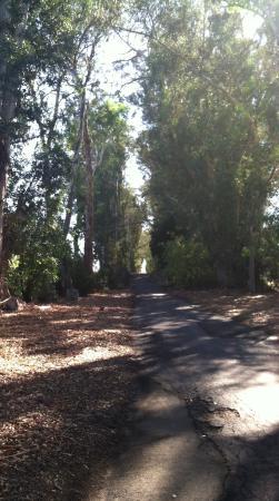 Napa Valley, Καλιφόρνια: Stanley Lane Crypto Park