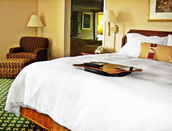Horse Cave, KY: King Whirlpool Room
