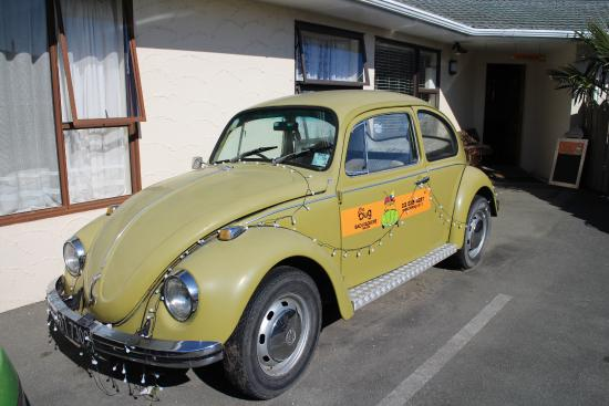 The Bug Backpackers: VW Beetle in front of Bug Backpackers
