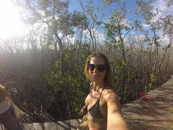 Casa Surf: the walk to the beach