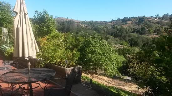 Fallbrook, CA: Patio