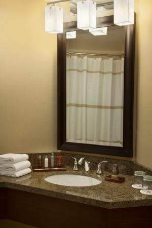 Niagara Falls Marriott Fallsview Hotel & Spa: Guest Bathroom