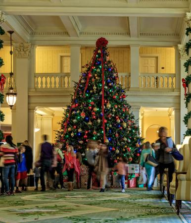 Hot Springs, VA: Lobby Christmas Tree