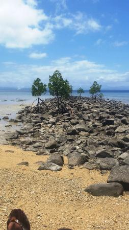 Beqa Island, Fiji: Tide goes out - and rocks and debris is the view
