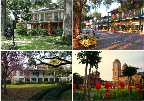 Econo Lodge Inn & Suites : Natchitoches Historic District