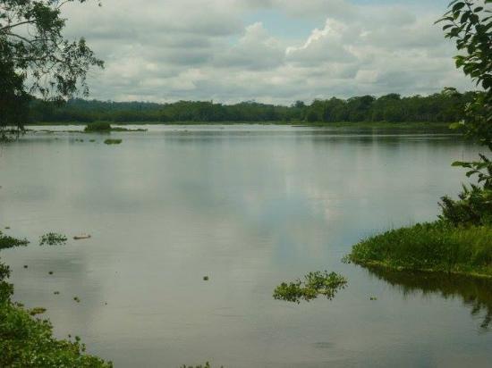 Yurimaguas, Perú: Lago Cuipari