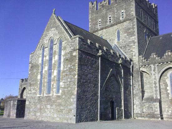 Saint Brigid's Cathedral and Round Tower: church view