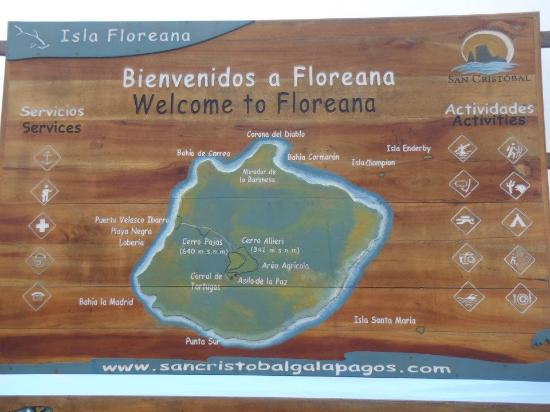 Wittmer Lodge: mapa floreana