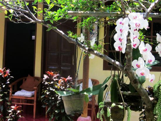 Terrace Campuhan Guest House