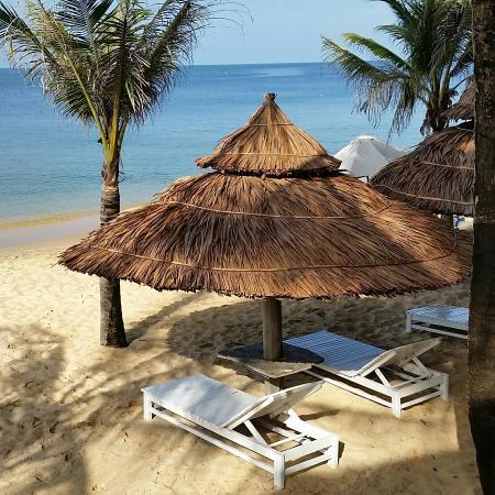 Thien Thanh Resort照片