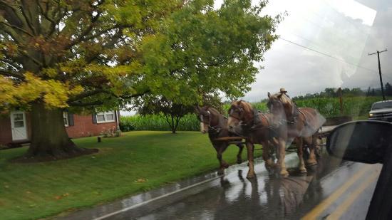 Fort Lancaster State Historical Park