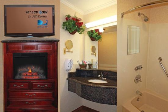 ديناستي سويتس ريدلاندز: In room amenities