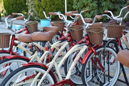 Southampton Inn: Bikes