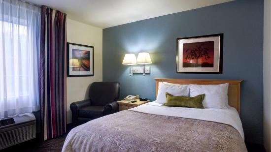 Candlewood Suites Austin-Round Rock: Queen Studio