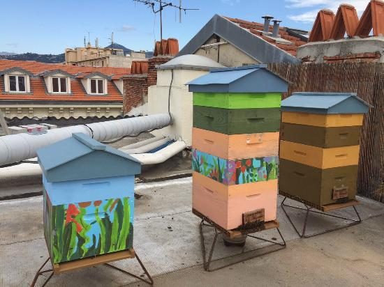 Grand Hotel le Florence: Nos ruches / our hives