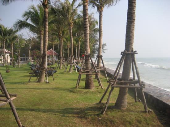 Grand Pacific Sovereign Resort & Spa: De ligplekken bij het strand