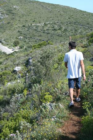 Torres Novas, Portugal: Pedestrianism