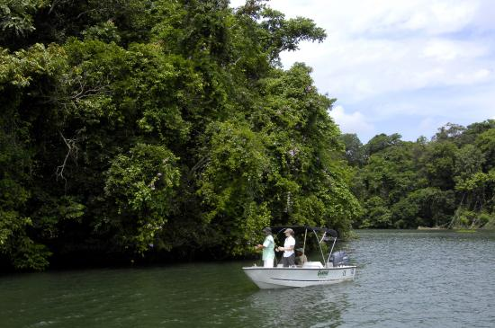 Gamboa Rainforest Resort: Fishing at the Panama Canal