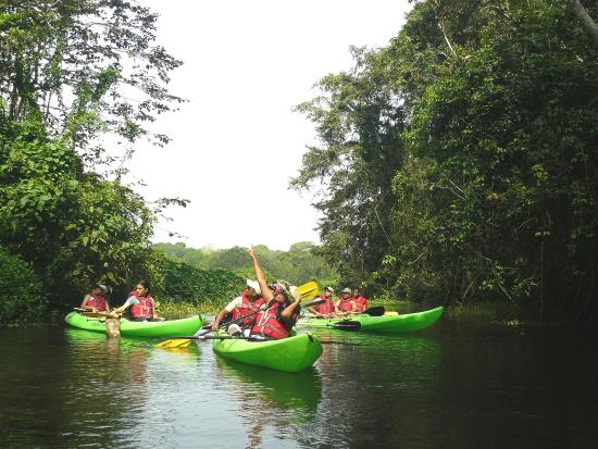 Gamboa Rainforest Resort: Kayaking