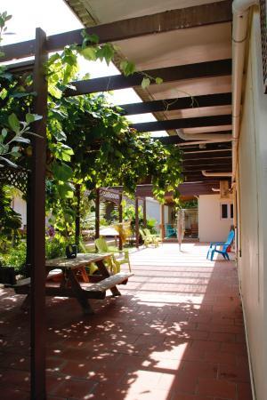 Pauline's Apartments Aruba: Apartment area