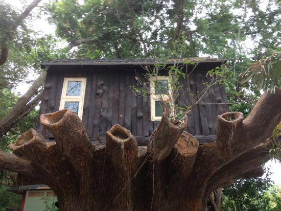 Kor Sor Resort & Spa : Домик на дереве