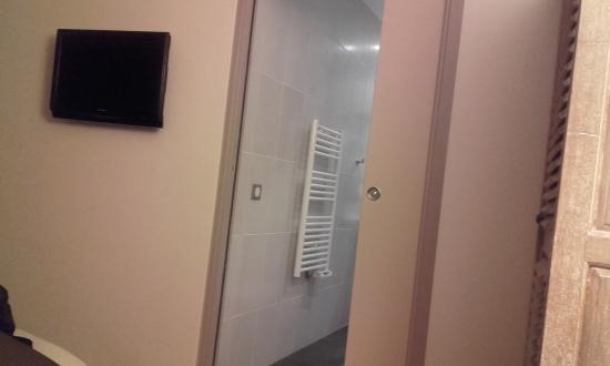 Hotel du Printemps: Sale de bain fonctionnelle (handicapé) et écran plat