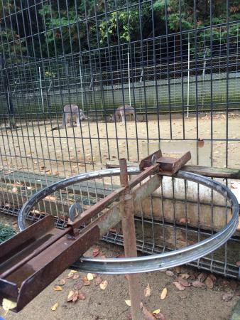 Fukuchiyama City Zoo