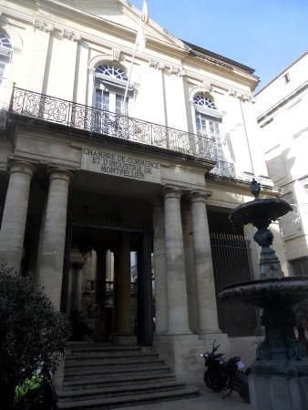 Amphiteatre Anatomique St-Come
