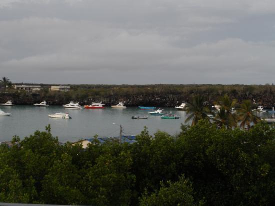 Grand Hotel Lobo de Mar: vista desde los balcones