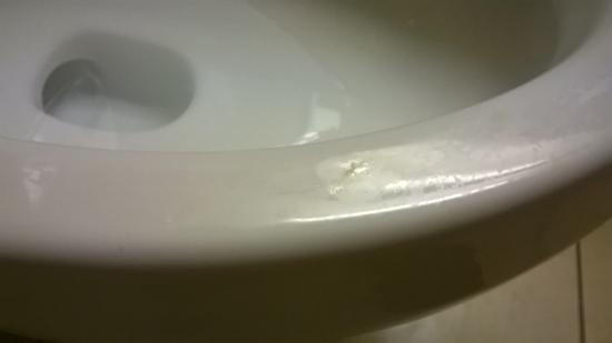 Comfort Suites: Urine stained toilet