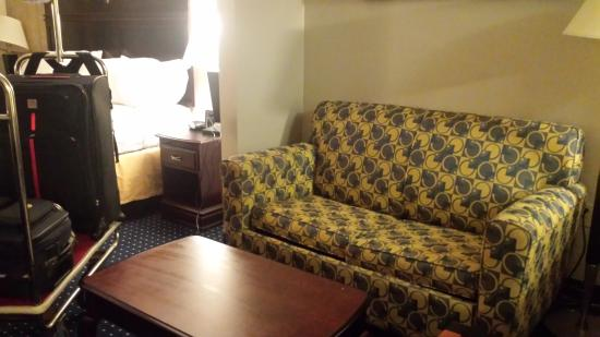 Holiday Inn Express & Suites Annapolis: Pull out couch
